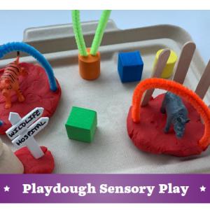 animal sensory kit